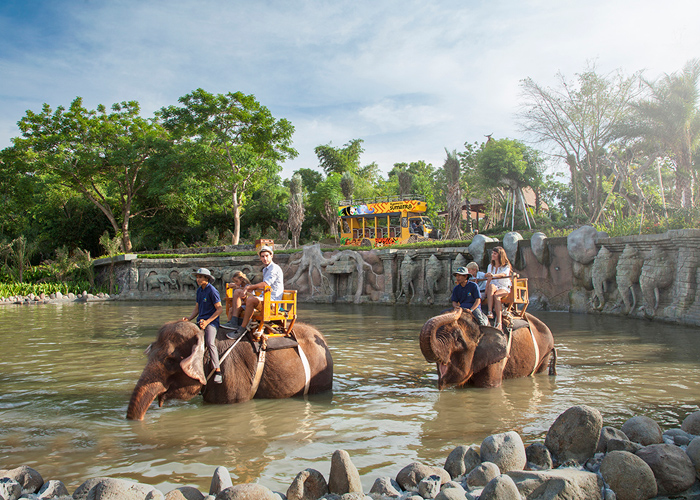 Bali Zoo Elephant Expedition