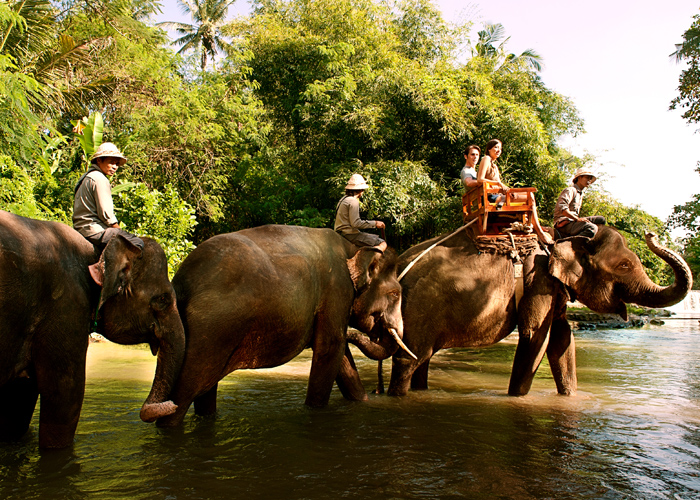 Elephant Ride Bali - Activities Package in Bali
