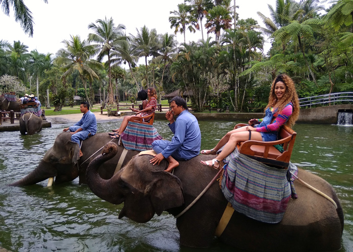Mason Elephant Ride - Activities Package in Bali