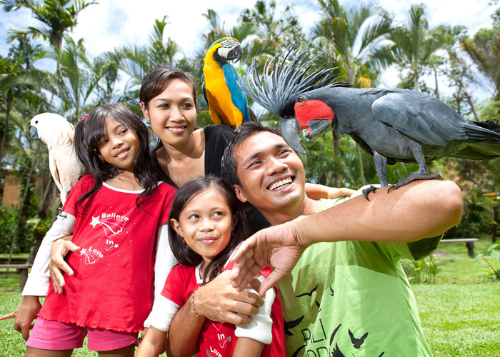 Bali Bird Park - Activities Package in Bali