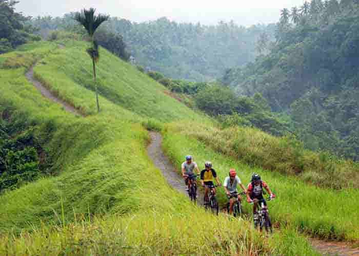 Bali Downhill Cycling Tour