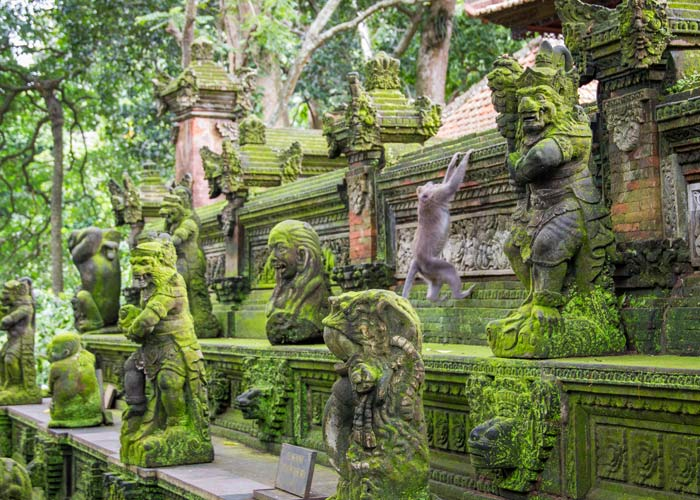 Monkey Forest Ubud Indonesia - Place Interest in Bali