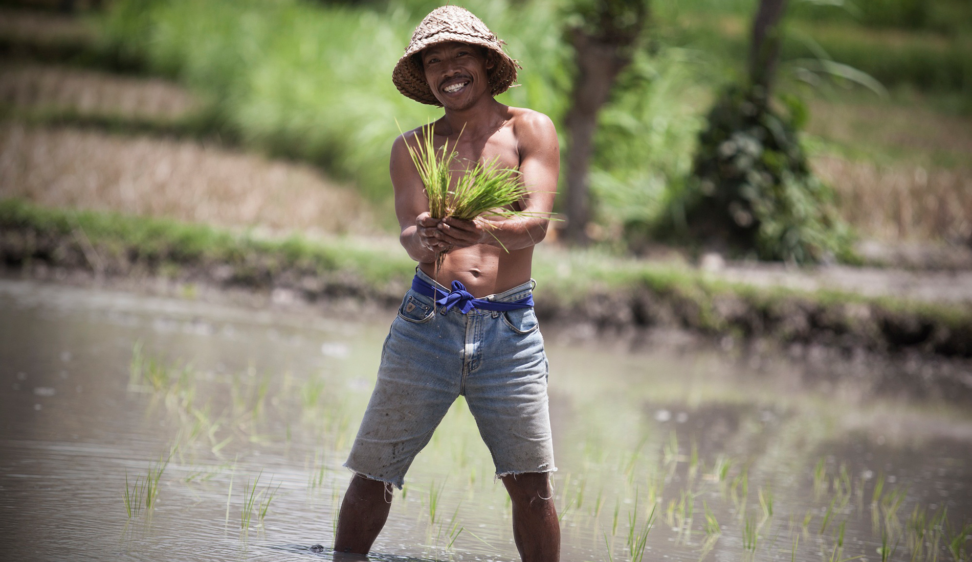 Balinese Farmer - Things To Do in Bali Tours Activities