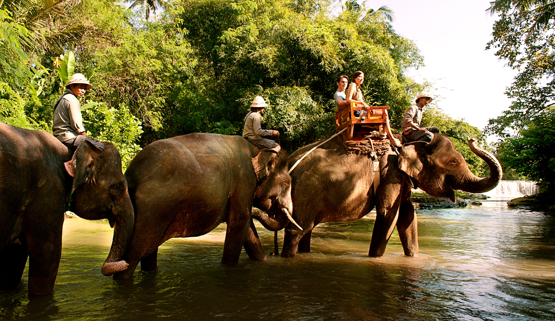 Elephant Expedition Bali Zoo - Bali Private Transport and Tour in Bali