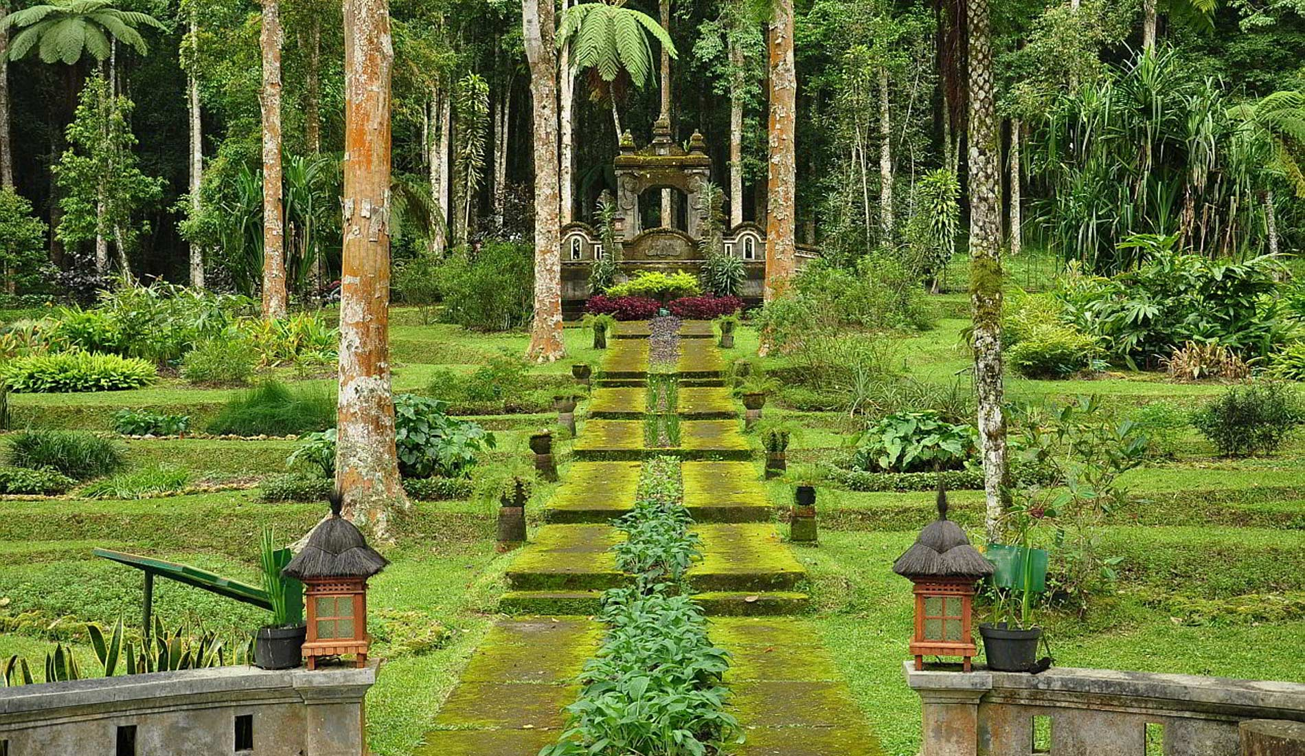 Bedugul Botanical Garden - Things To Do in Bali Tours Activities