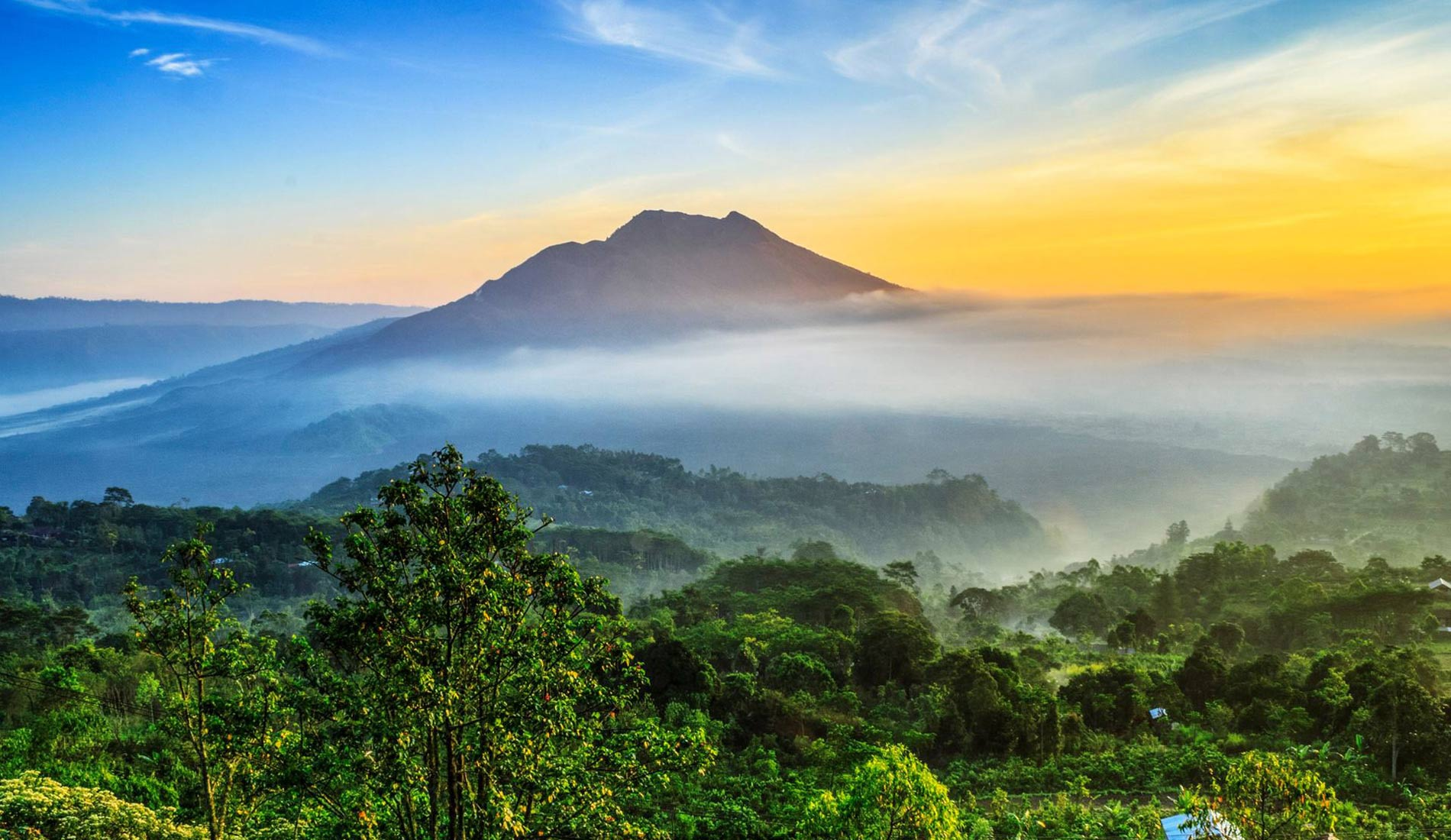 View Kintamani Tours - Bali Tours Activities