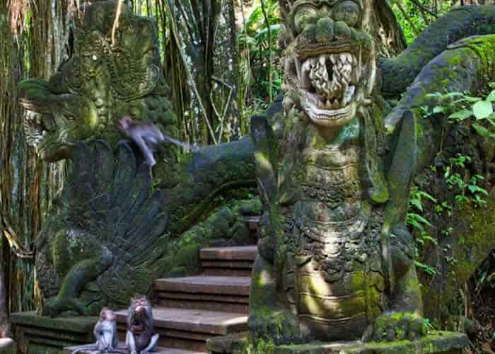 Bali Wellness Monkey Forest - Half Day Tours in Bali