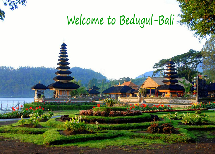 Ulundanu Temple Bali - Car Charter And Transfer in Bali