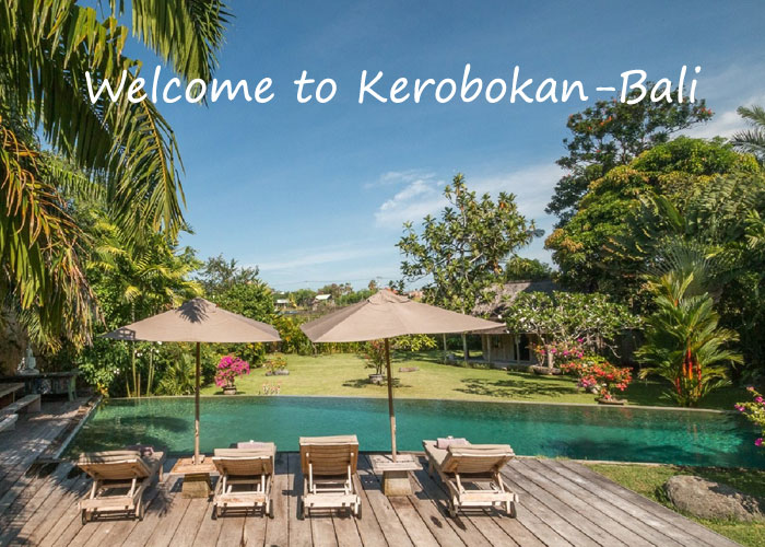 Welcome To Kerobokan - Car Charter And Transfer in Bali